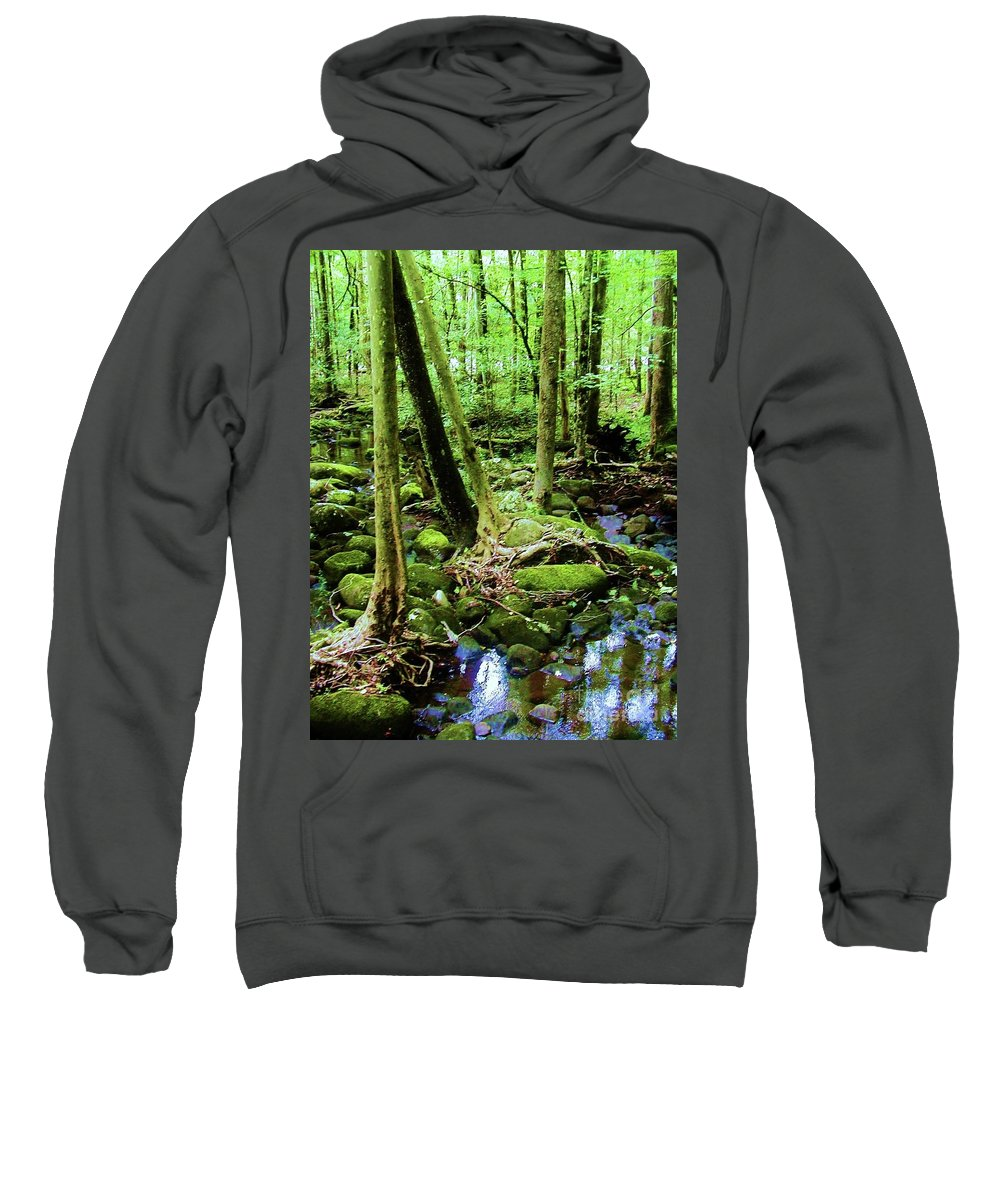 River Sweatshirt featuring the photograph Evolution Of A Forest In Spring by Diana Dearen