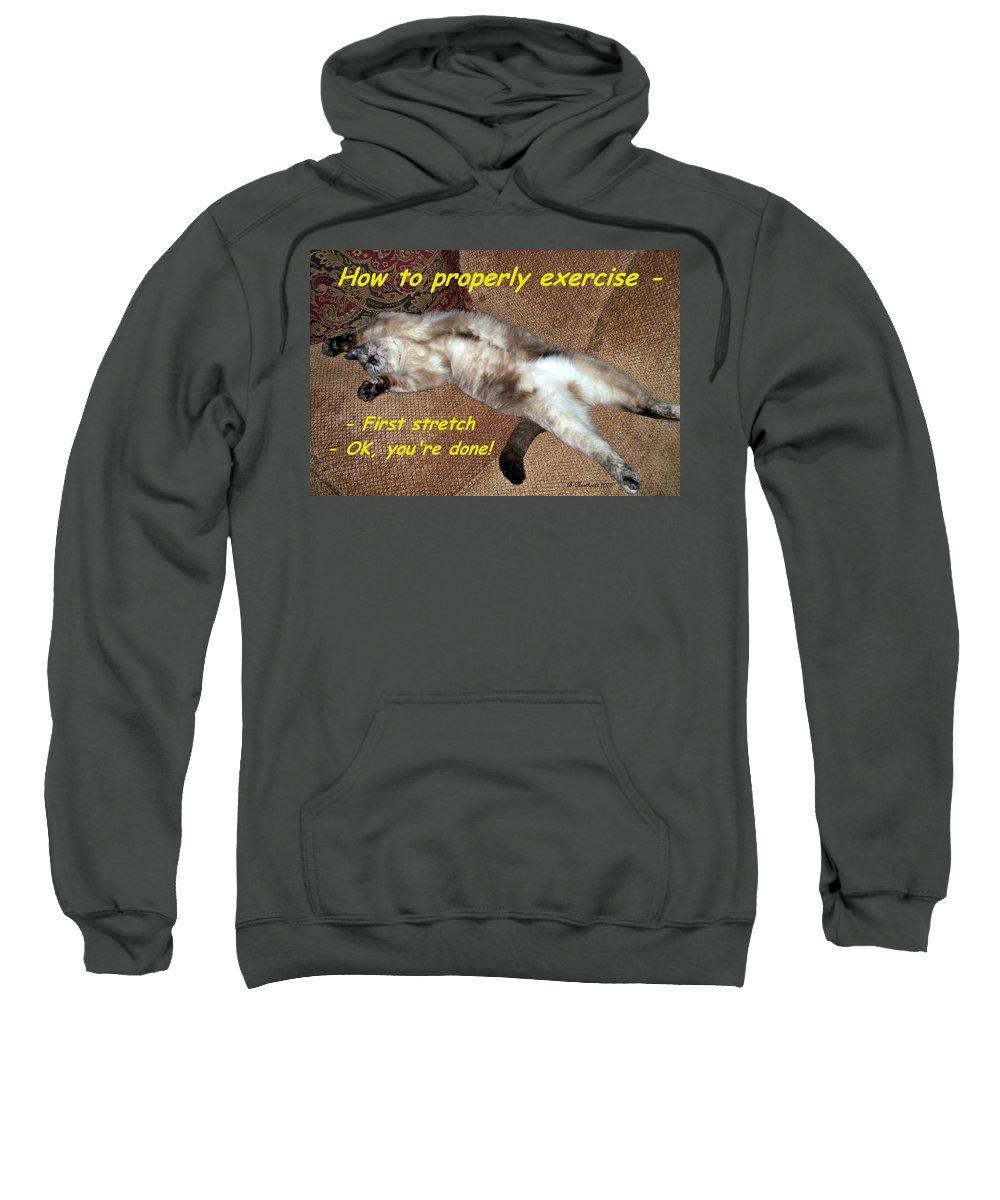 Animals Sweatshirt featuring the photograph Exercise 101 by Betty Northcutt
