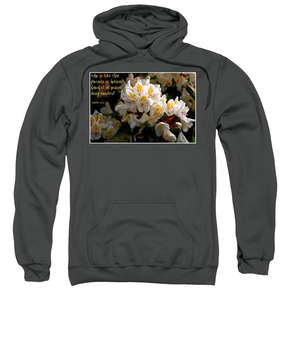 Jesus Sweatshirt featuring the digital art Exodus 15 11 by Michelle Greene Wheeler