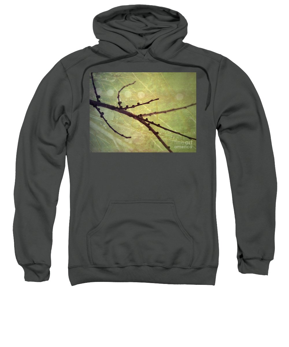 Branch Sweatshirt featuring the photograph Exposed by Tara Turner
