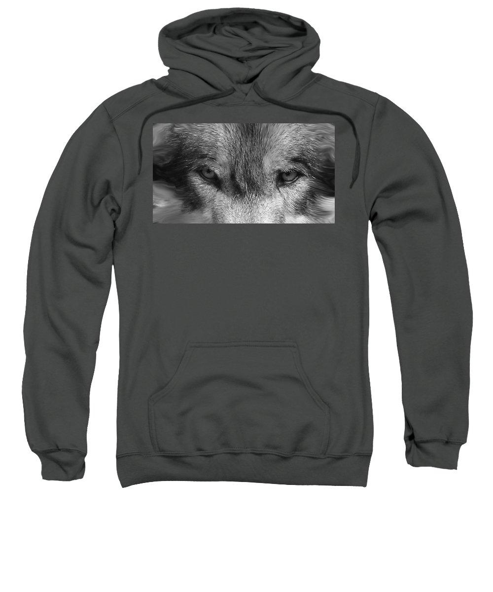 Wolf Canid Canus Lupis Wildlife Grey Gray Timberwolf Animal Mammal Photograph Photograhy Eyes Black White Desaturate Sweatshirt featuring the photograph Eyes Of The Wild by Shari Jardina