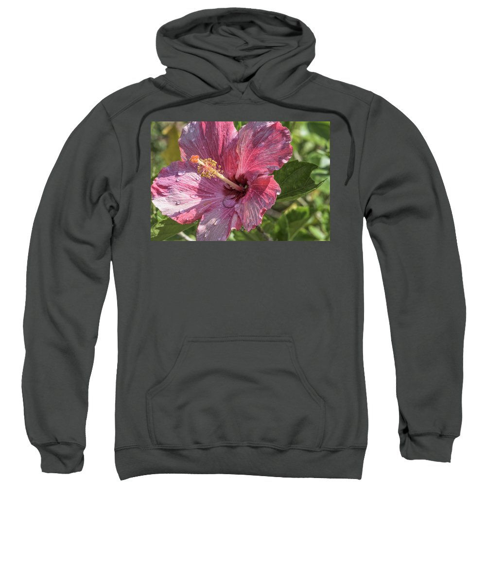 Hibiscus Sweatshirt featuring the photograph Fading by Louise Hill