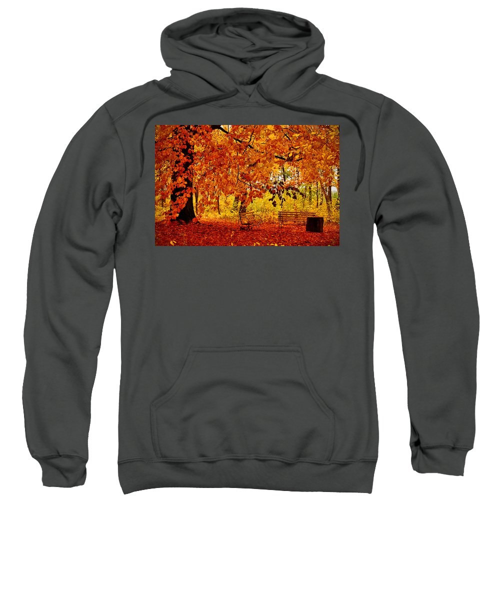 Fall Sweatshirt featuring the digital art Fall by Bert Mailer