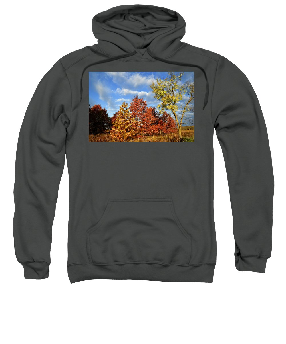 Mchenry County Conservation District Sweatshirt featuring the photograph Fall Color Comes To Oak Trees Along Route 31 by Ray Mathis
