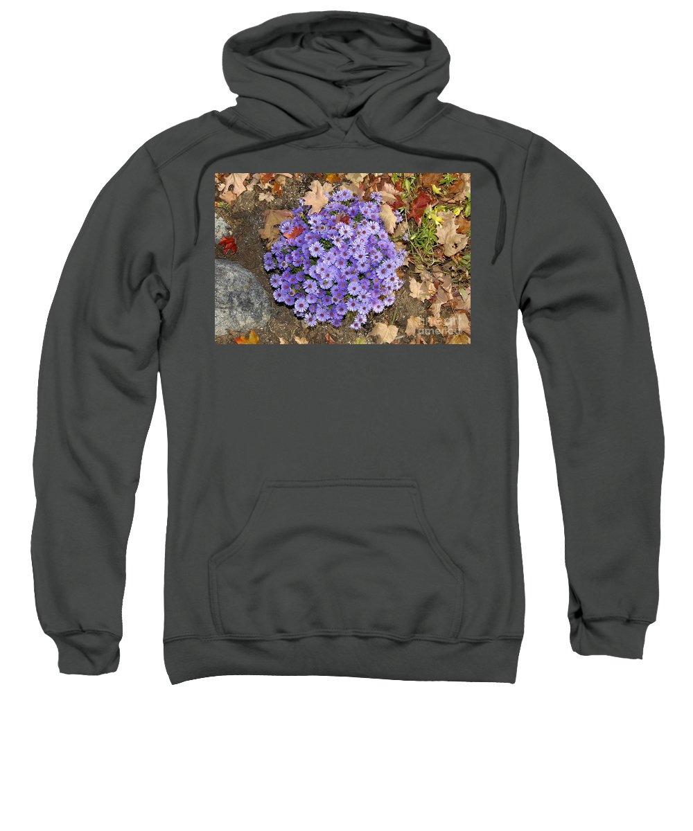 Fall Sweatshirt featuring the photograph Fall Flowers by David Lee Thompson
