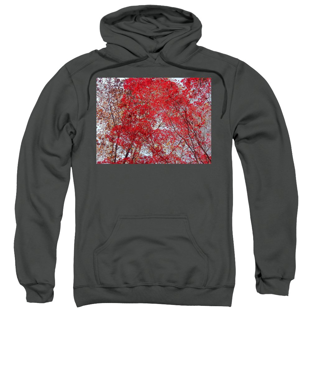 Leaves Sweatshirt featuring the photograph Fall Foilage by Deborah Crew-Johnson