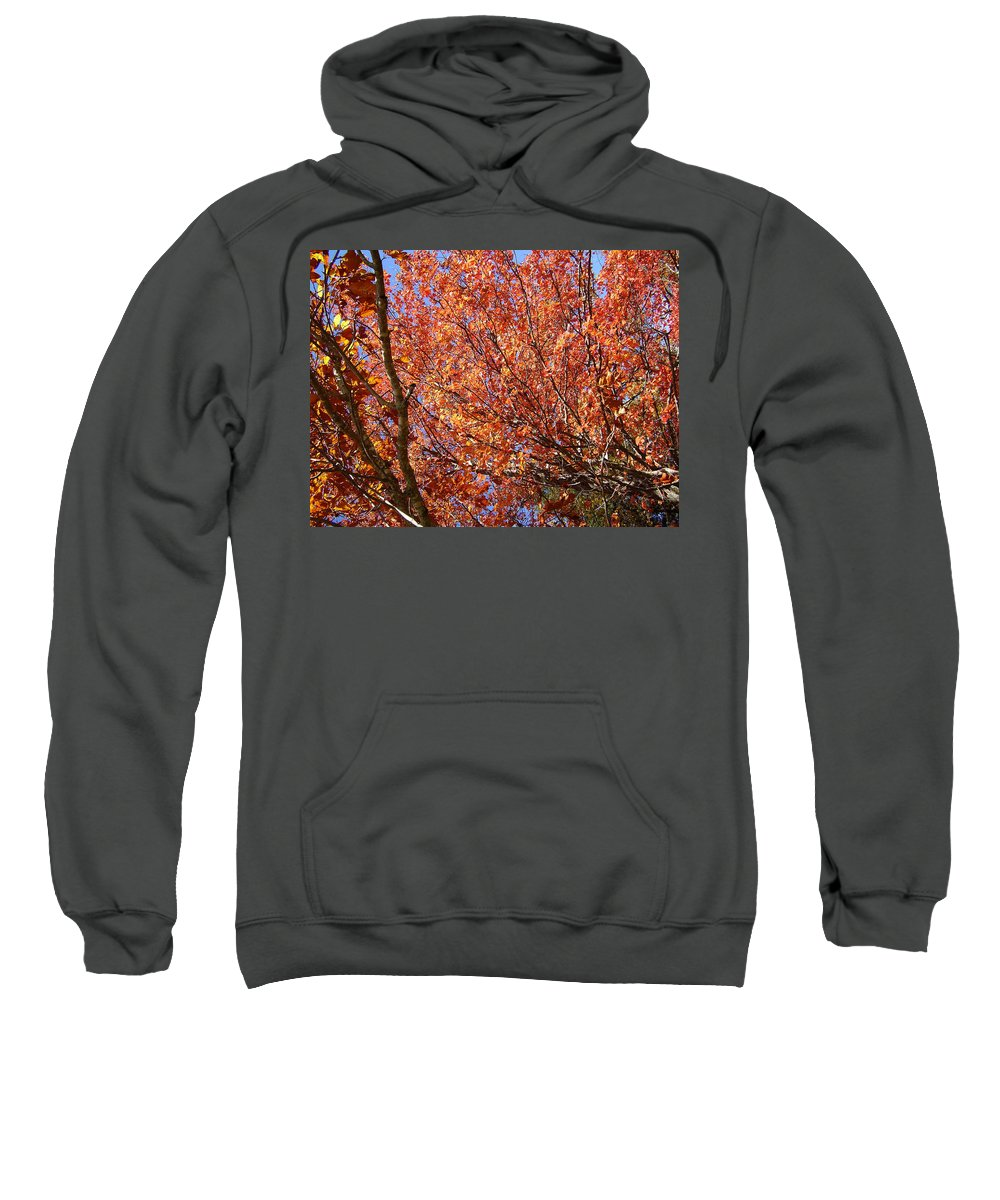 Fall Sweatshirt featuring the photograph Fall In The Blue Ridge Mountains by Flavia Westerwelle