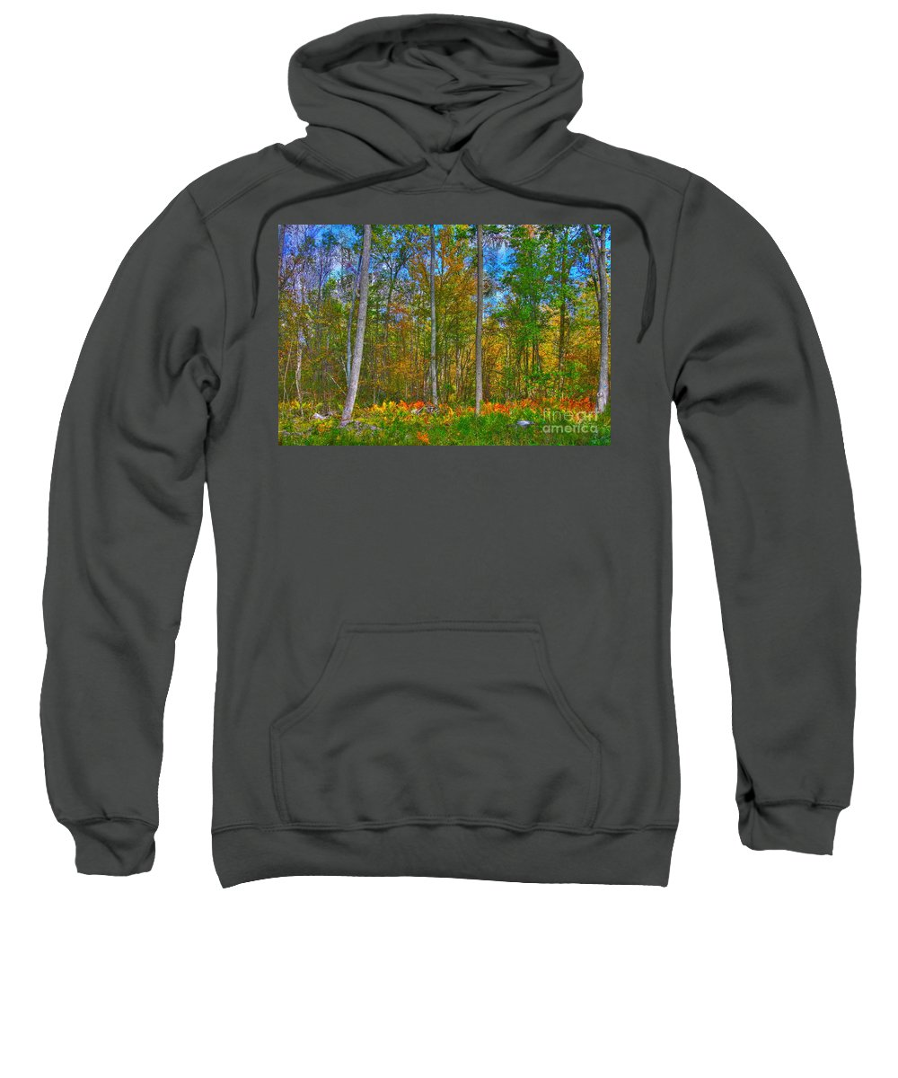 Fall Sweatshirt featuring the photograph Fall In The Swamp by Robert Pearson