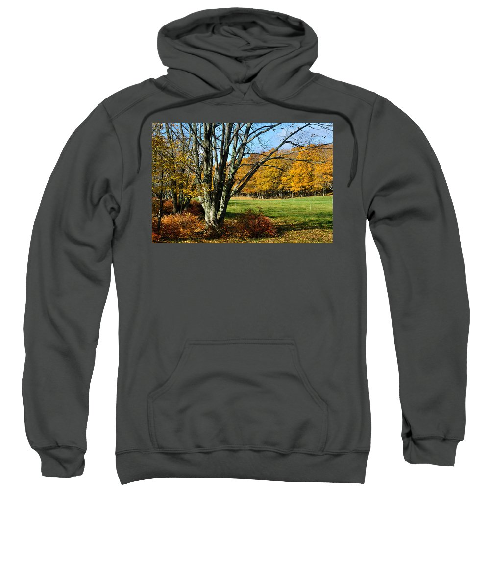 Trees Sweatshirt featuring the photograph Fall Pasture by Tim Nyberg