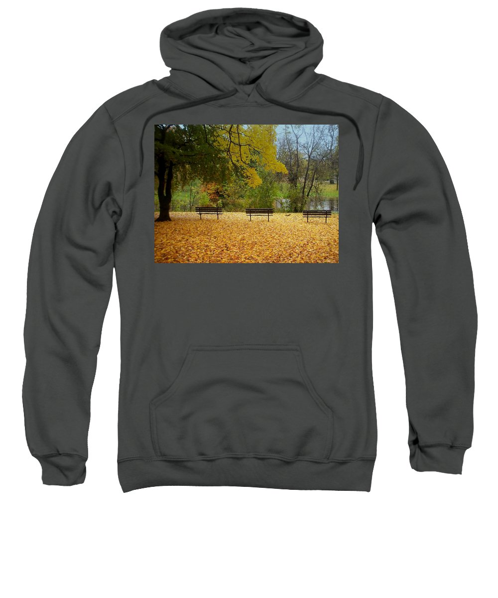 Fall Sweatshirt featuring the photograph Fall Series 13 by Anita Burgermeister