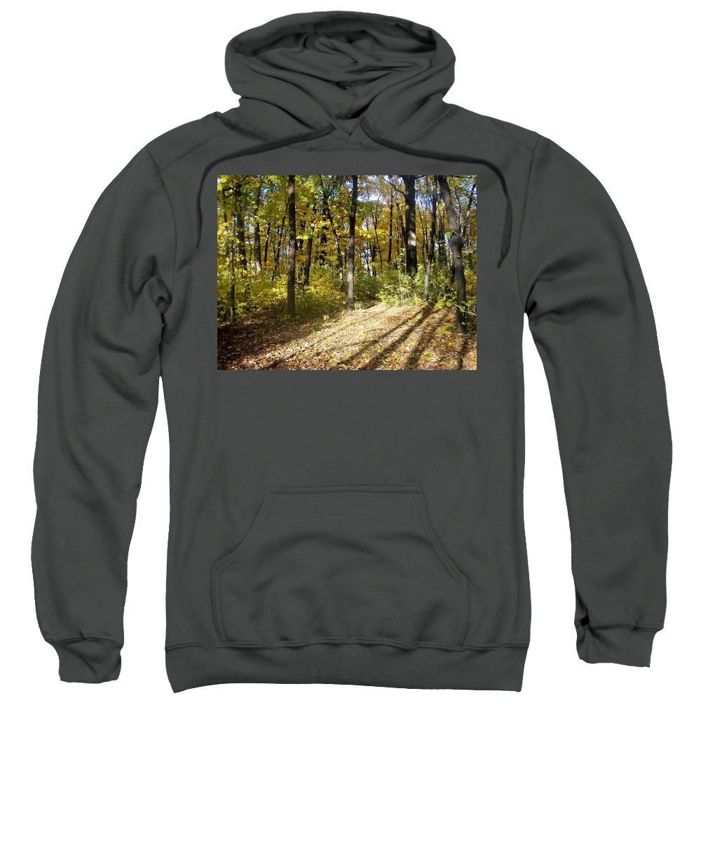 Fall Sweatshirt featuring the photograph Fall Series 2 by Anita Burgermeister
