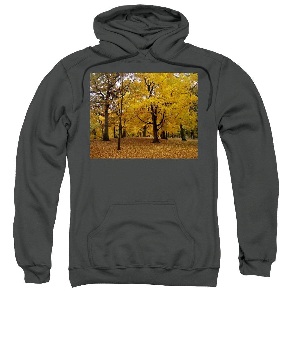 Fall Sweatshirt featuring the photograph Fall Series 5 by Anita Burgermeister