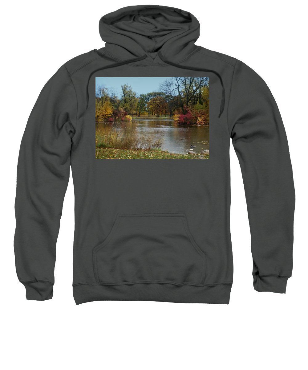 Fall Sweatshirt featuring the photograph Fall Series 9 by Anita Burgermeister