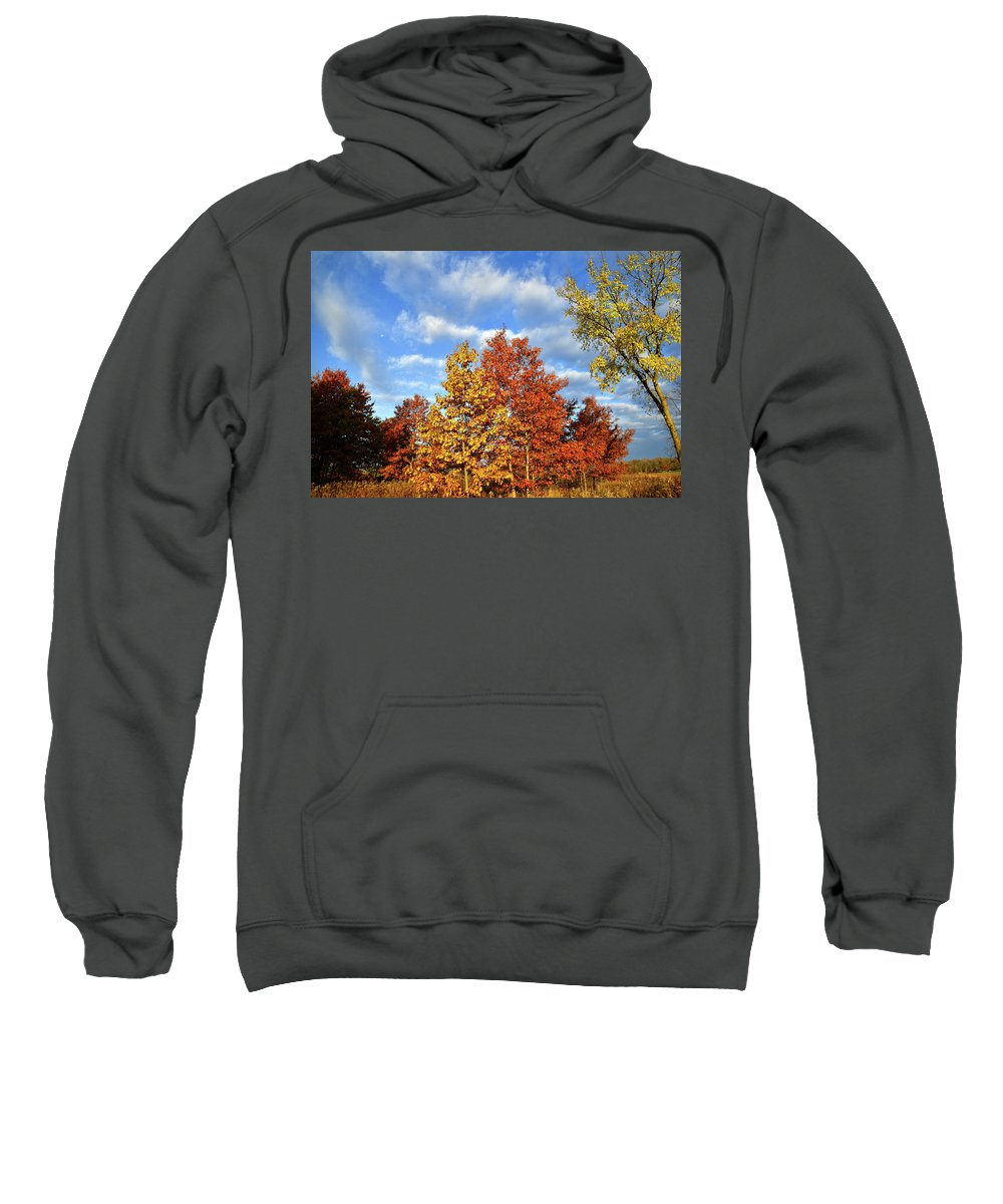 Mchenry County Conservation District Sweatshirt featuring the photograph Fall Sunrise On Hackmatack Nwr Oaks by Ray Mathis