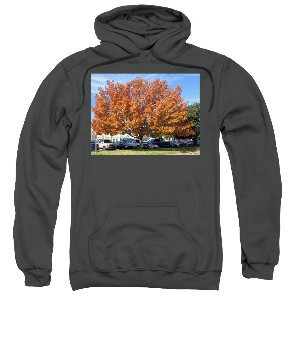 Fall Leaves Sweatshirt featuring the photograph Fall Time by Amy Hosp