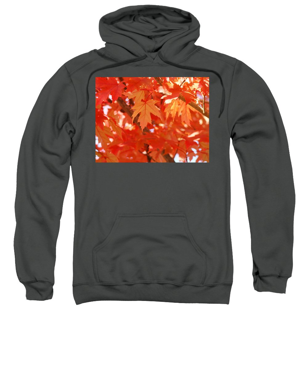 Autumn Sweatshirt featuring the photograph Fall Tree Art Autumn Leaves Red Orange Baslee Troutman by Baslee Troutman