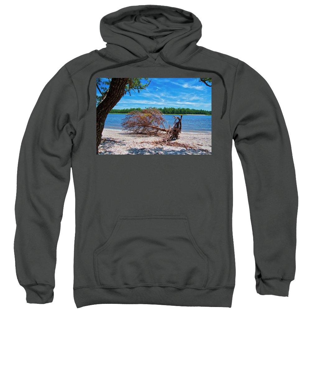 Tree Sweatshirt featuring the photograph Fallen Tree by TJ Baccari