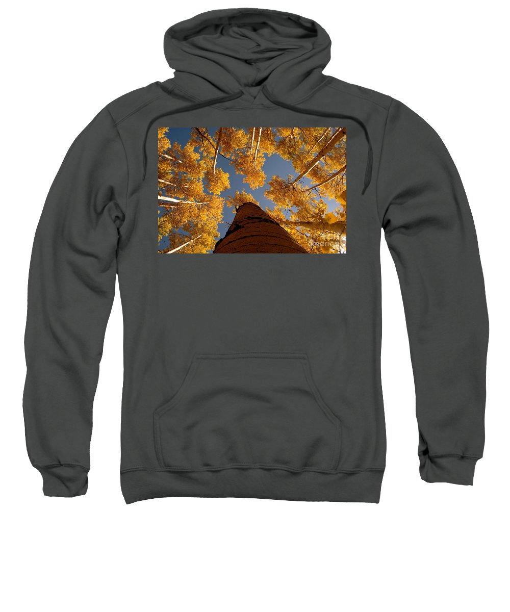 Fall Sweatshirt featuring the photograph Falling Sky by David Lee Thompson