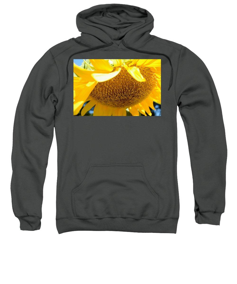 Falling Sunflower Sweatshirt featuring the photograph Falling Sunflower by Warren Thompson