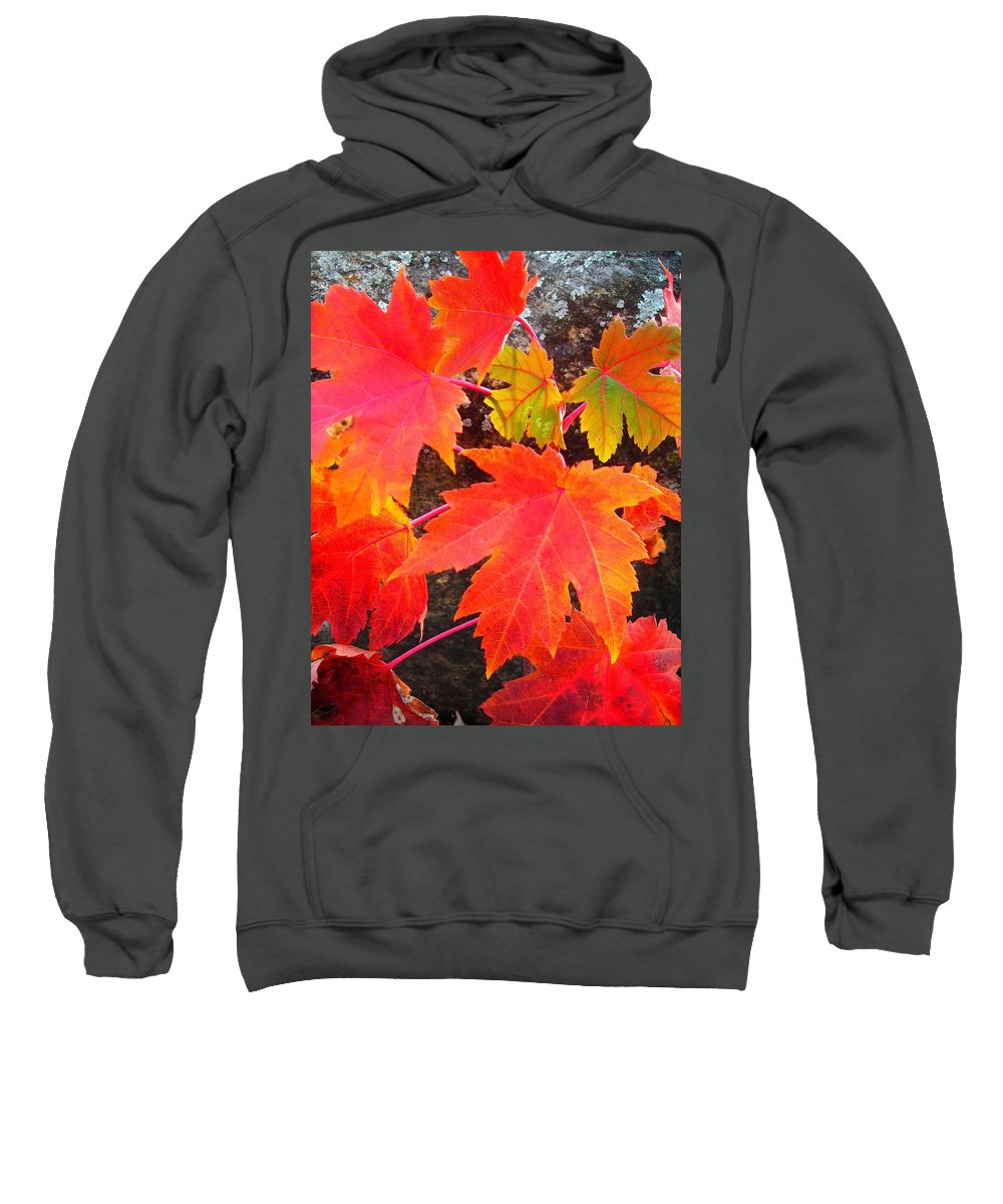 North America Sweatshirt featuring the photograph Falltime ... by Juergen Weiss