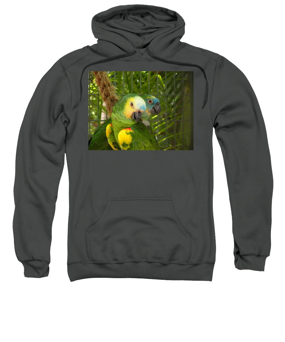 Birds Sweatshirt featuring the photograph Feathered Friends by Maria Bonnier-Perez