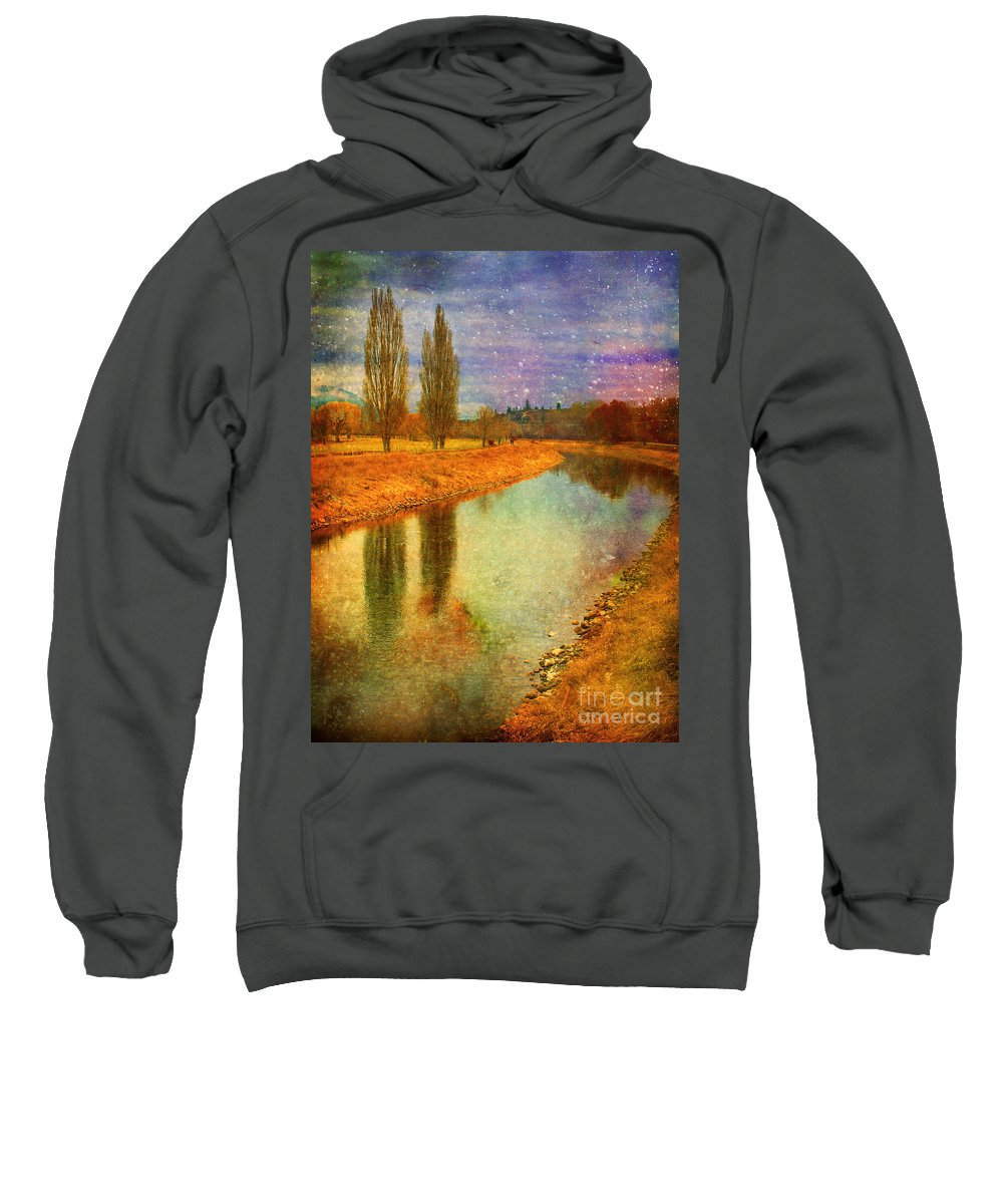 Texture Sweatshirt featuring the photograph February 3 2010 by Tara Turner