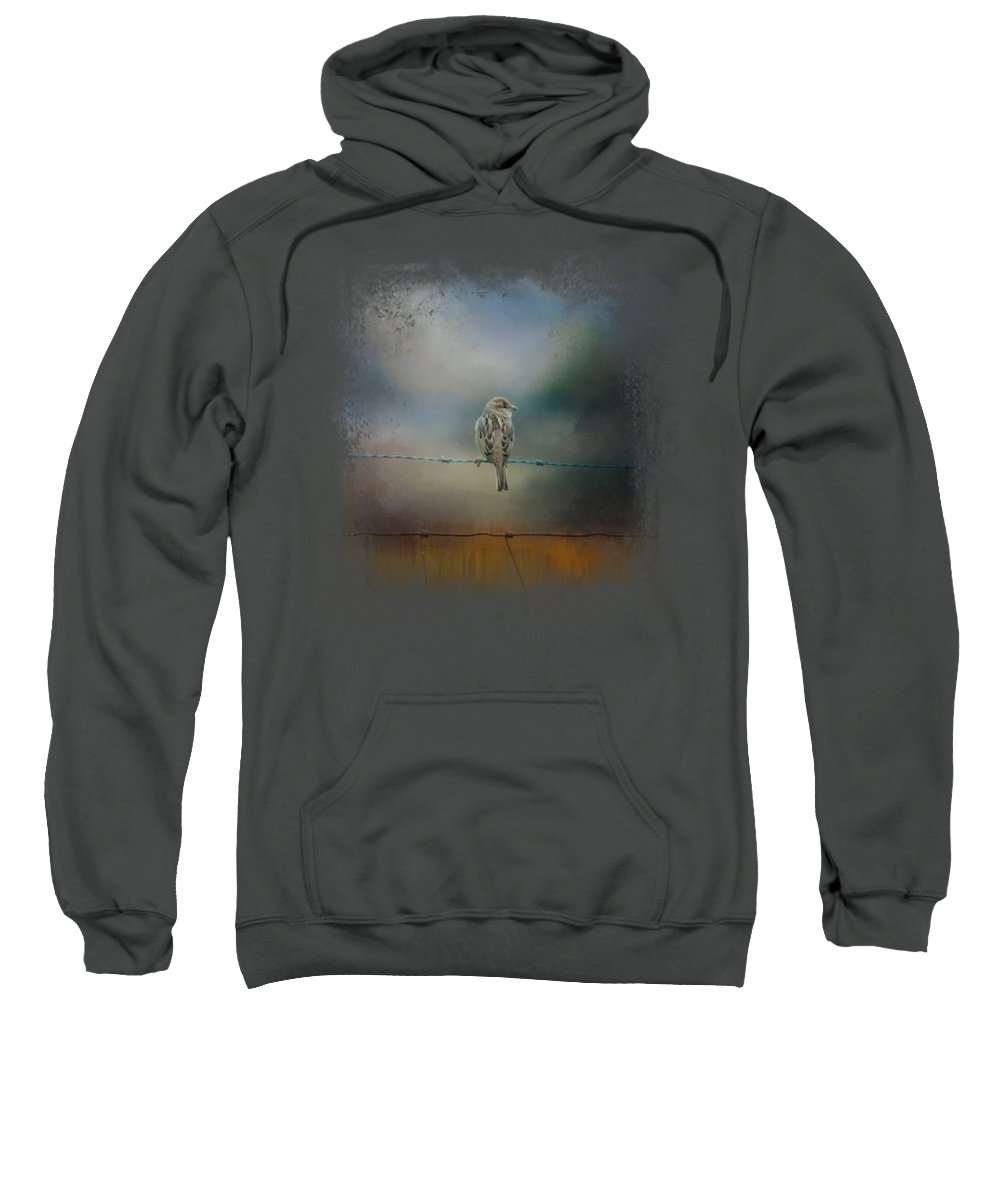 Sparrow Hooded Sweatshirts T-Shirts