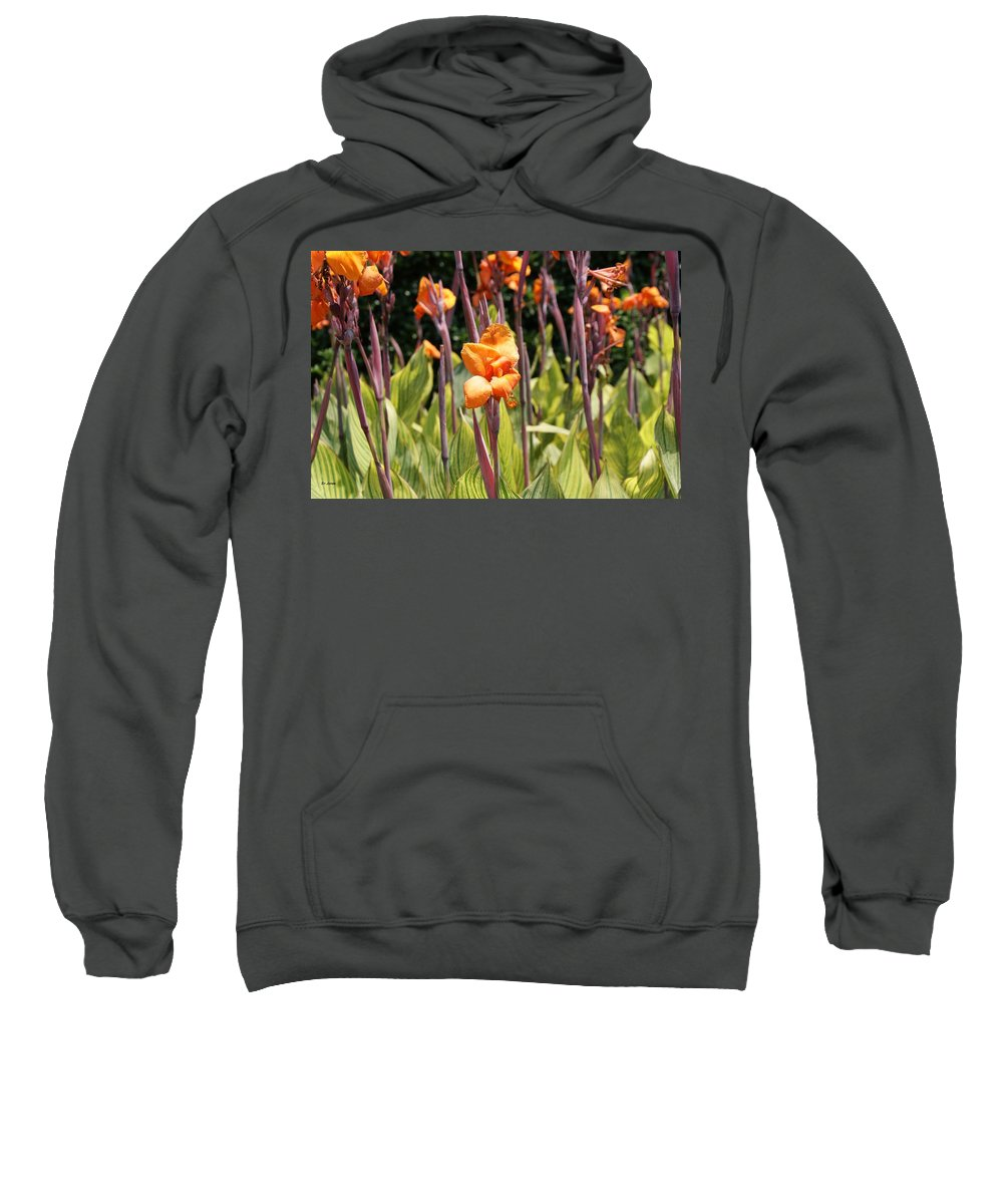 Floral Sweatshirt featuring the photograph Field For Iris by Shelley Jones