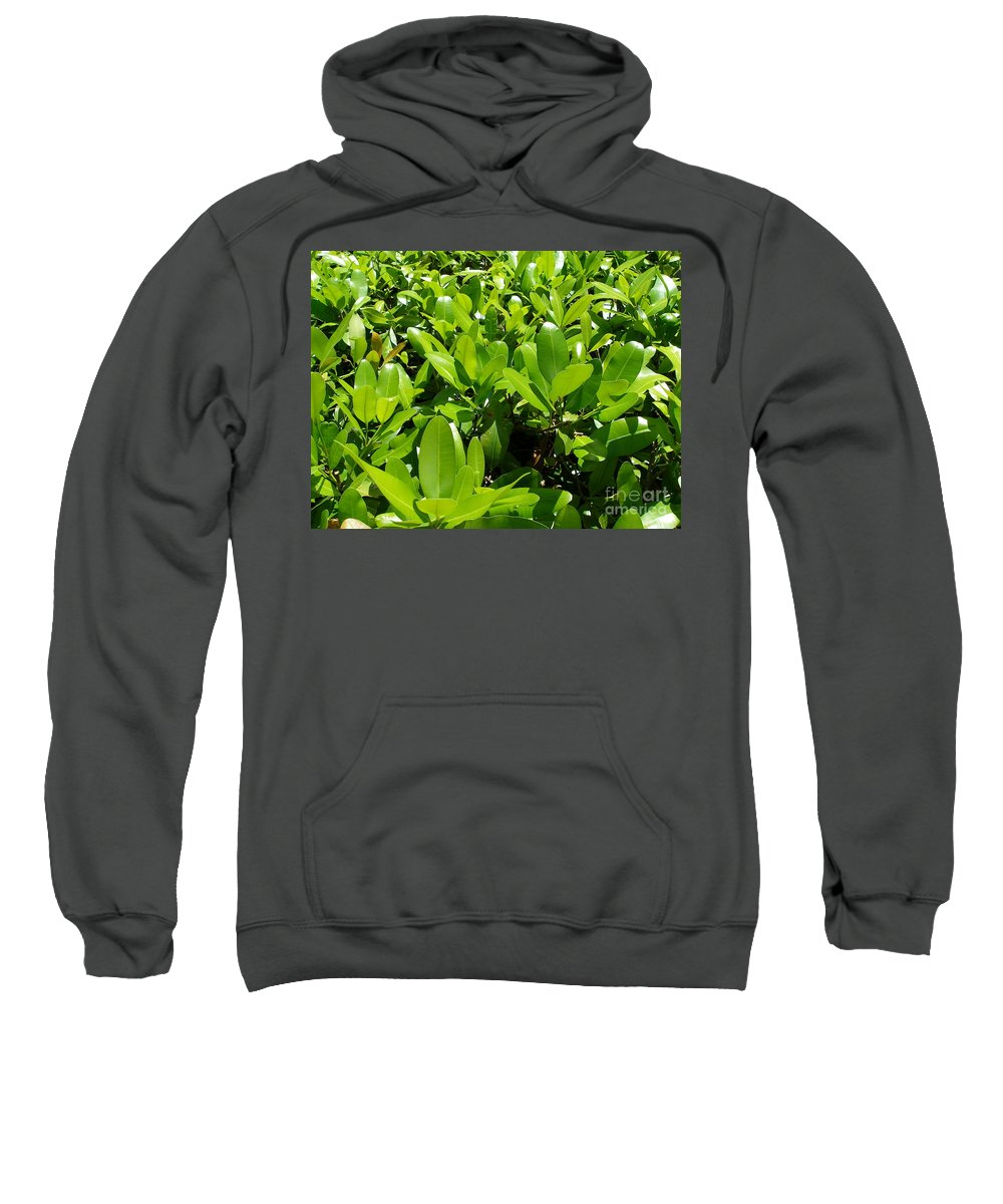 Shrub Sweatshirt featuring the photograph Field Of Green by Maria Bonnier-Perez