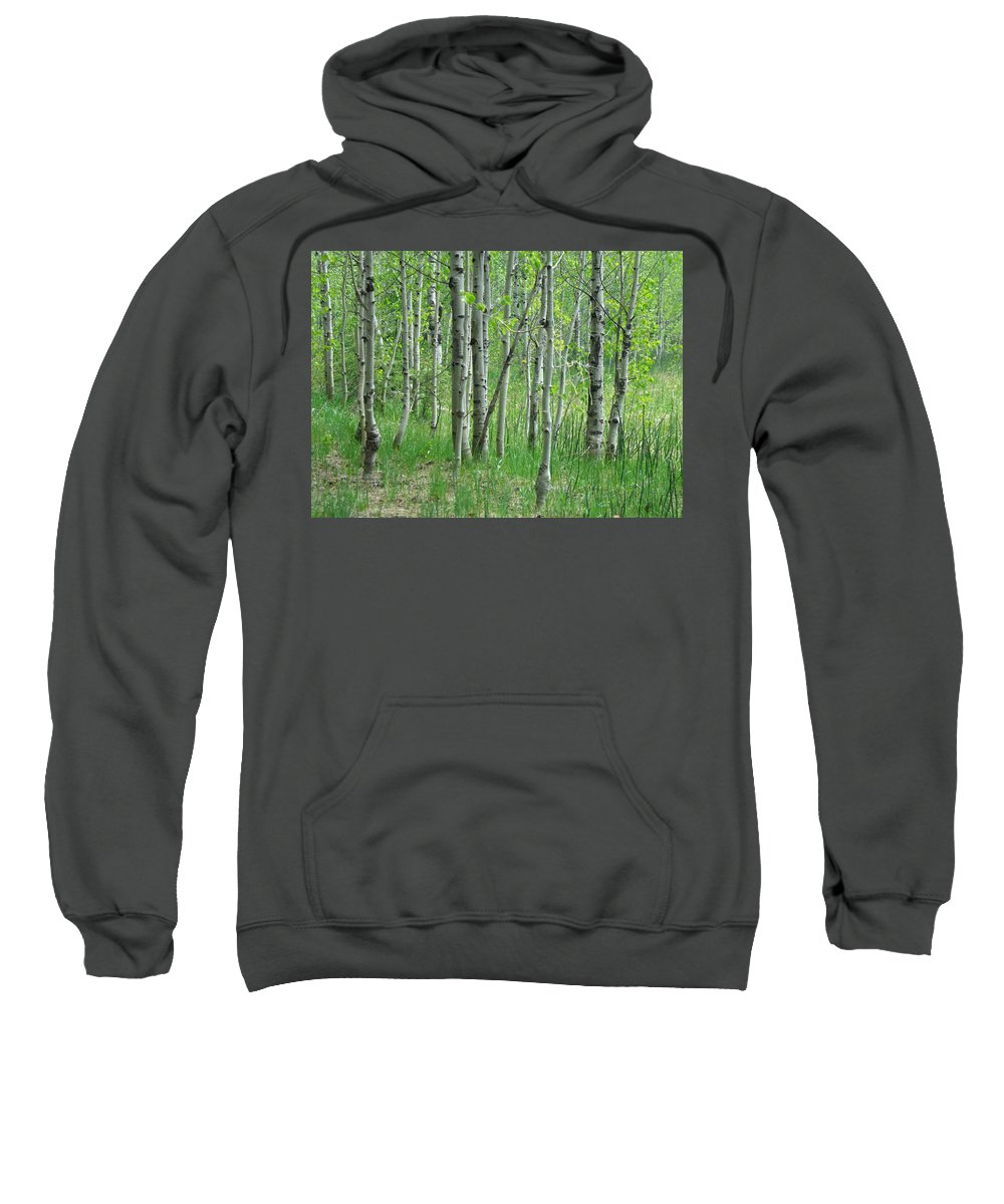 Tree Sweatshirt featuring the photograph Field Of Teens by Donna Blackhall