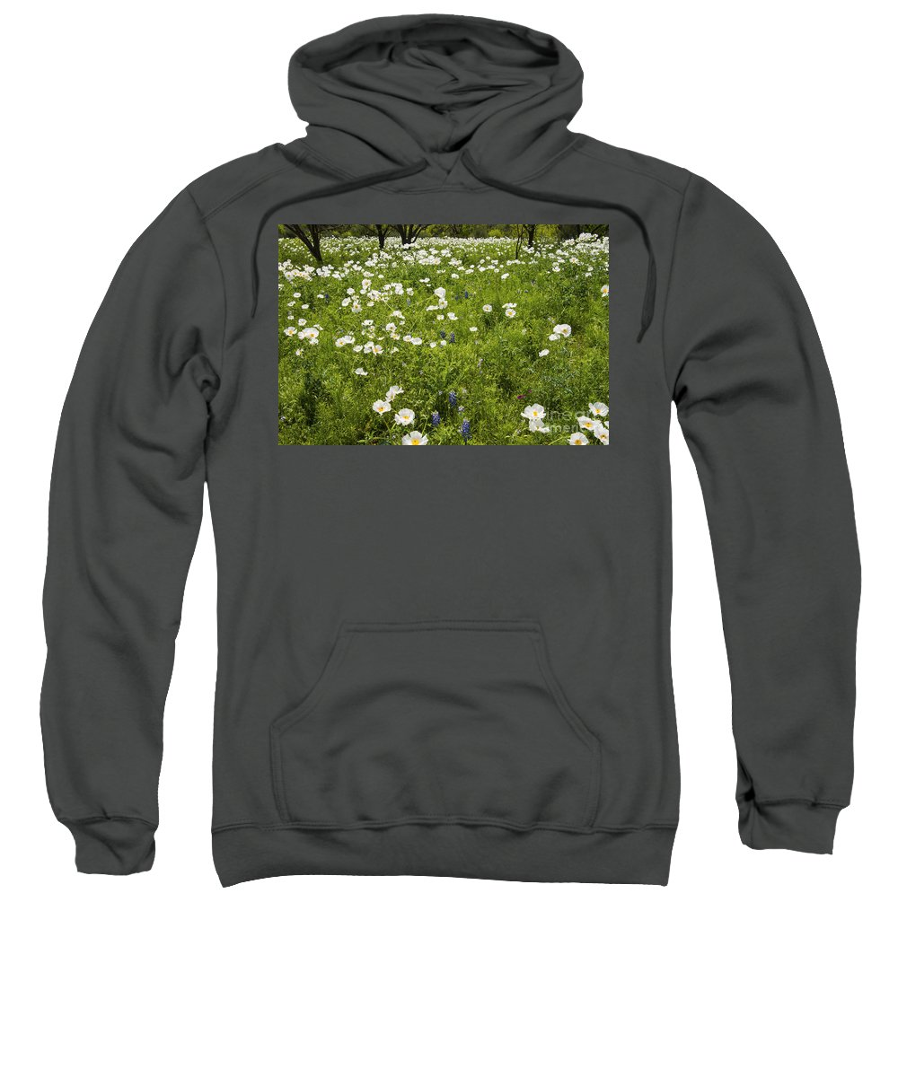 Fredericksburg Texas White Poppy Poppies Grass Grasses Tree Trees Landscape Landscapes Bloom Blooms Flower Flowers Spring Hill Country Sweatshirt featuring the photograph Field Of White Poppies by Bob Phillips