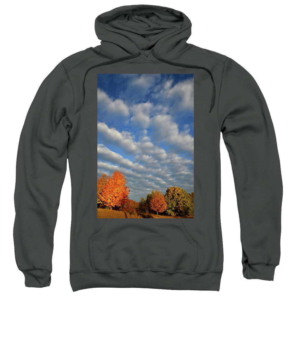 Mchenry County Conservation District Sweatshirt featuring the photograph First Light On Glacial Park Sugar Maples by Ray Mathis