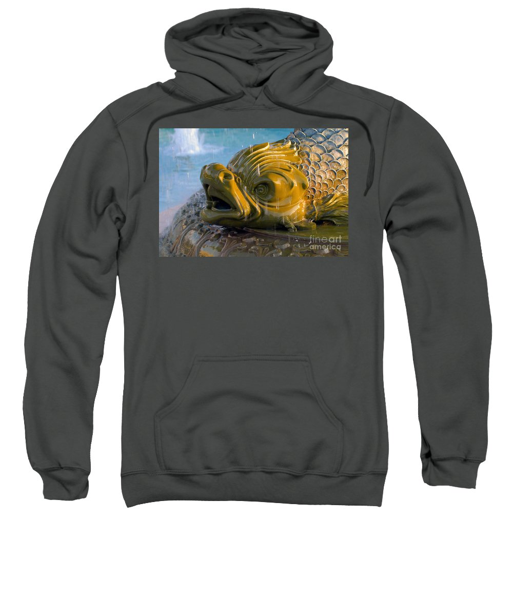 Fish Sweatshirt featuring the photograph Fish Out Of Water by David Lee Thompson