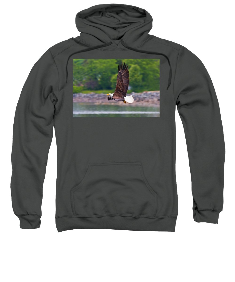 Eagle Sweatshirt featuring the photograph Fishing In The Rain by Mike Dawson
