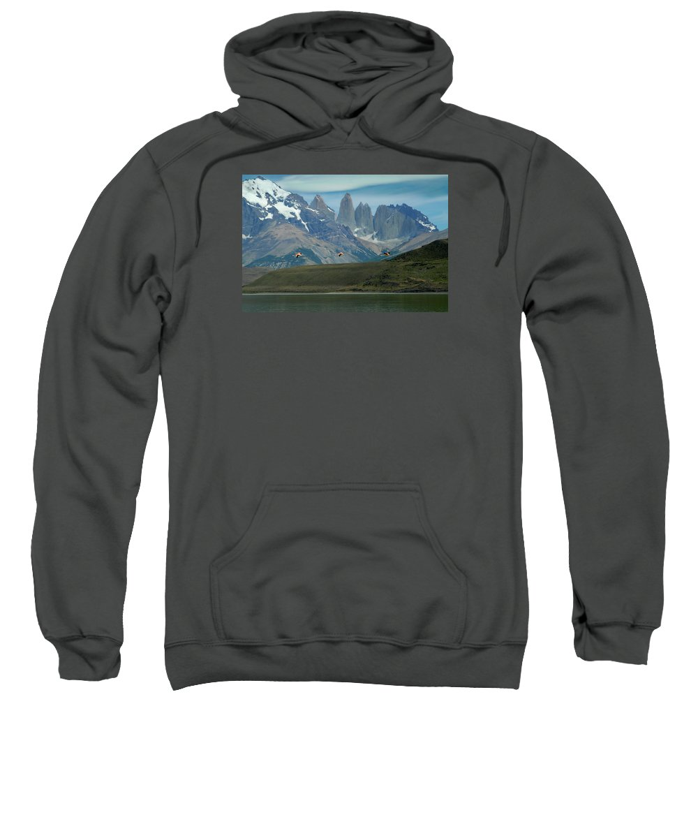 Chile Sweatshirt featuring the photograph Flamingos Over Lago Nordenskjold by Alan Toepfer