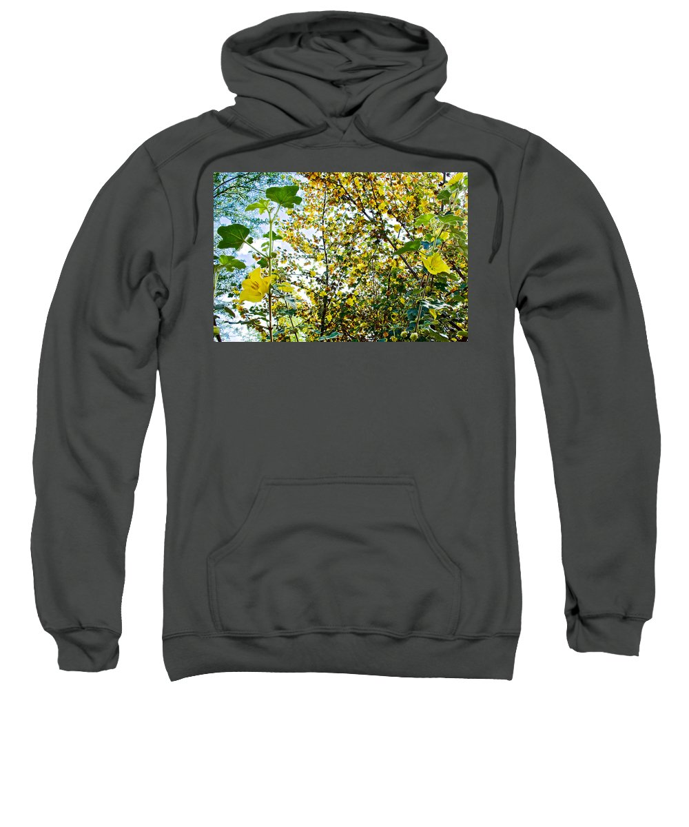 California Glory At Pilgrim Place In Claremont Sweatshirt featuring the photograph California Glory At Pilgrim Place In Claremont-california by Ruth Hager