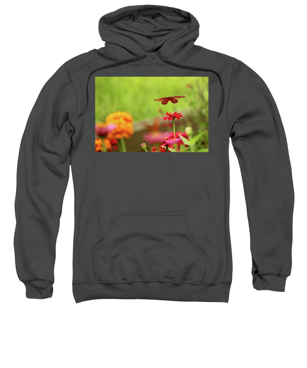 Butterfly Sweatshirt featuring the photograph Float Like A Butterfly by Beverly Cummiskey