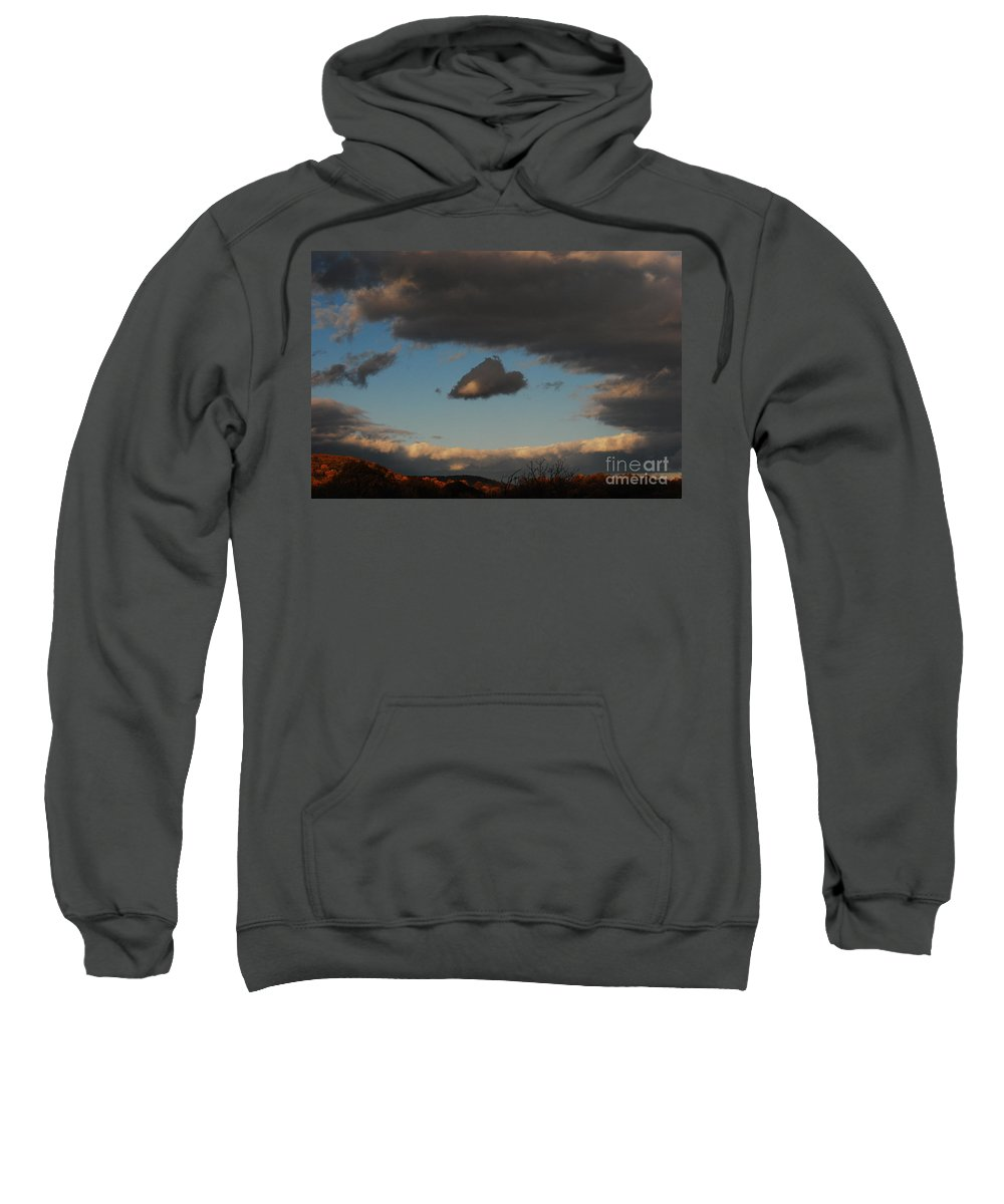 Heart Sweatshirt featuring the photograph Floating Heart by Lori Tambakis