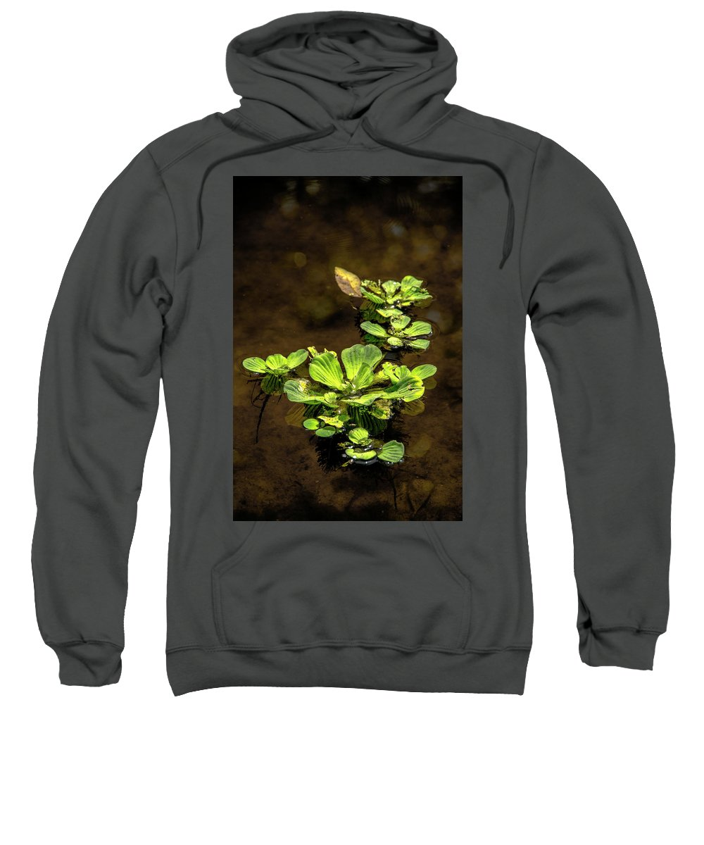 Floating Sweatshirt featuring the photograph Floating by Michael Frizzell