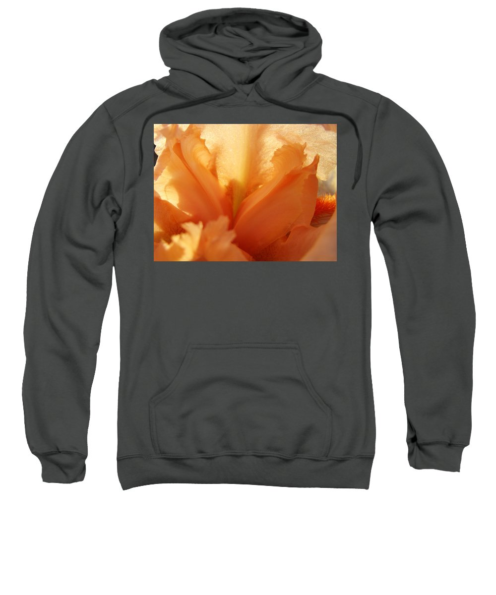 Iris Sweatshirt featuring the photograph Floral Art Orange Iris Flower Sunlit Baslee Troutman by Baslee Troutman