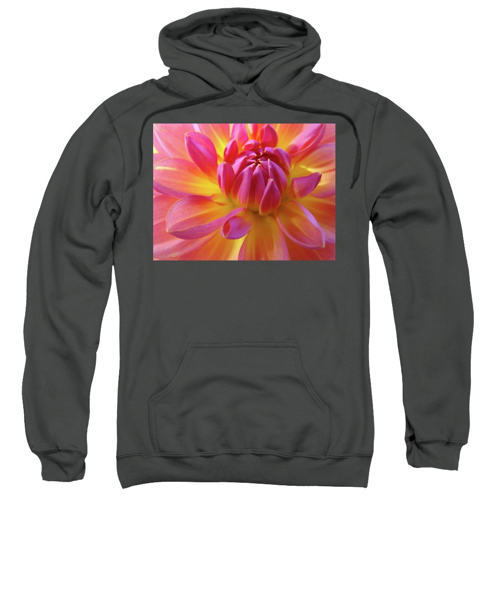 Dahlia Sweatshirt featuring the photograph Floral Art Prints Dahlia Flower Giclee Artwork Baslee Troutman by Baslee Troutman