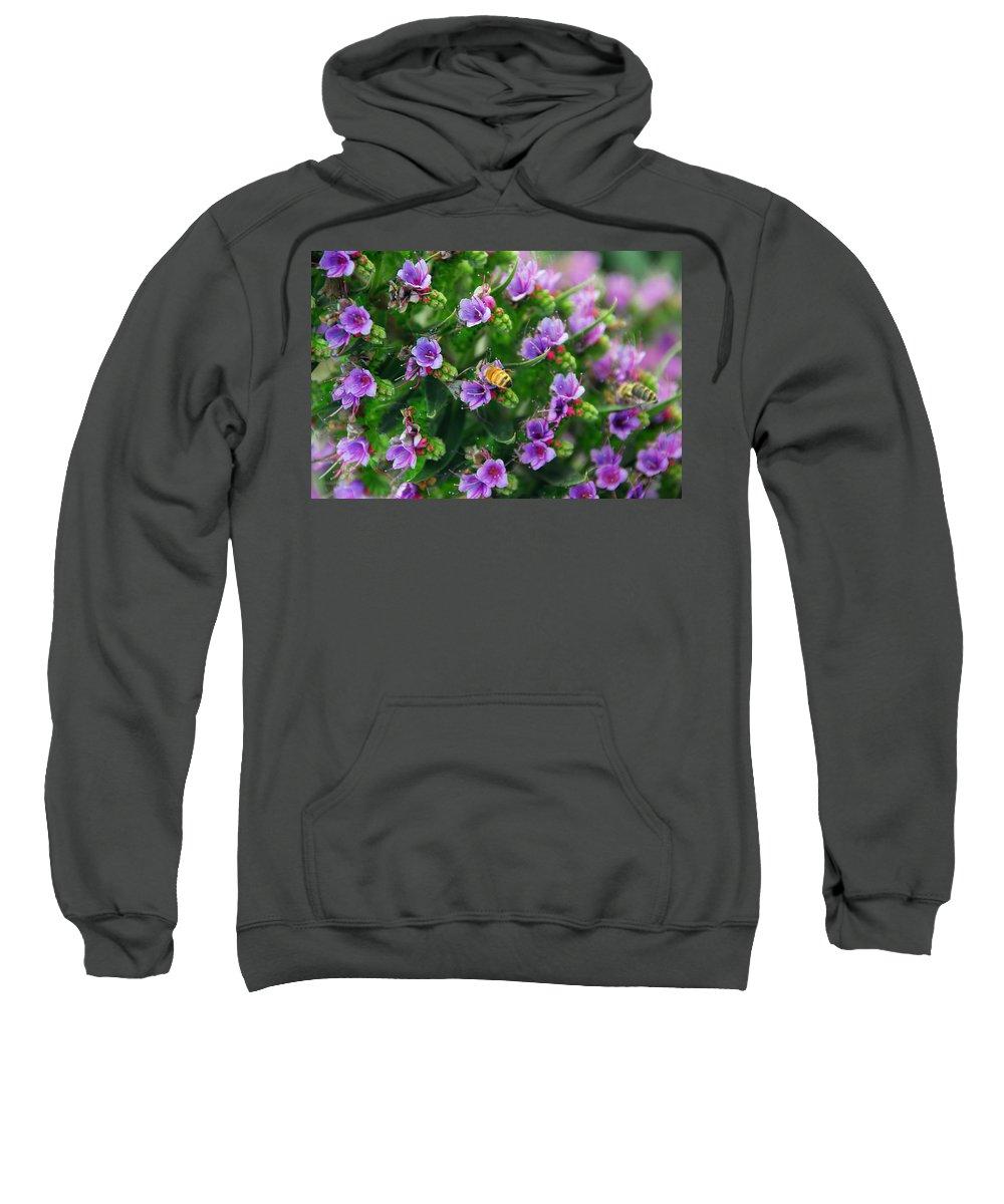 Bee Sweatshirt featuring the photograph Floral Beehive by Georgiana Romanovna