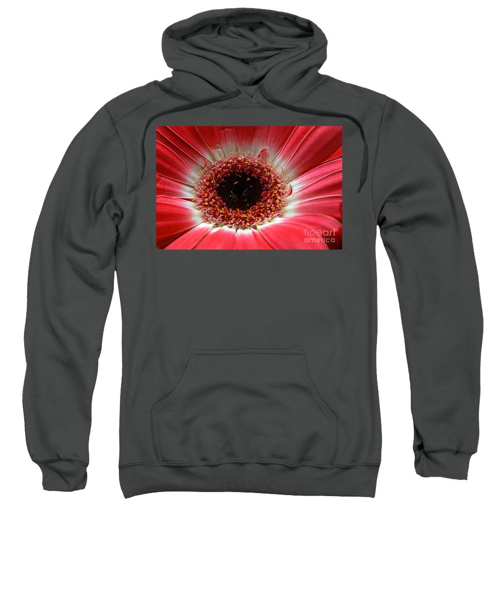 Clay Sweatshirt featuring the photograph Floral Eye by Clayton Bruster