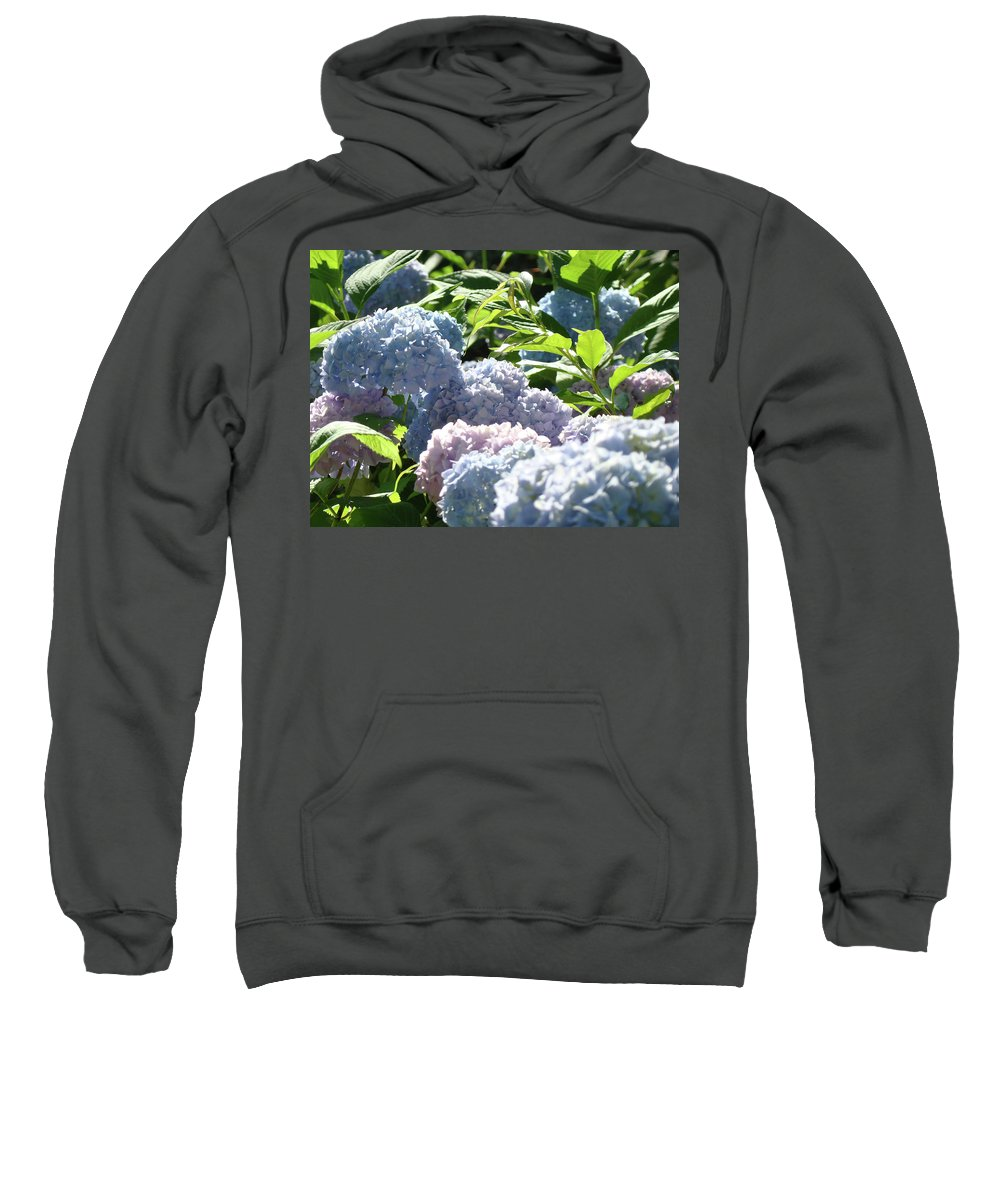 Nature Sweatshirt featuring the photograph Floral Garden Art Prints Blud Hydrangea Flowers by Baslee Troutman