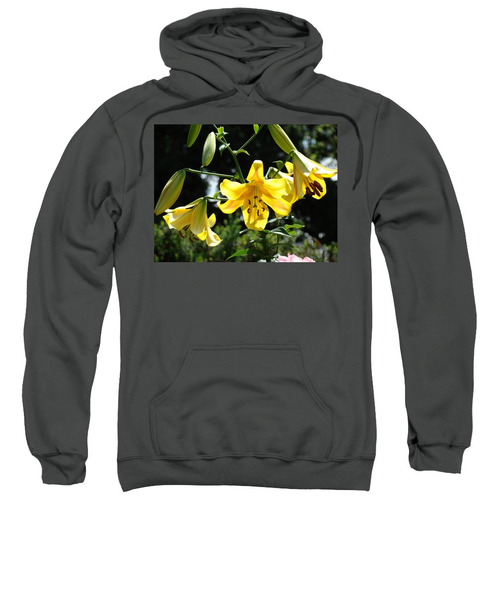 Lilies Sweatshirt featuring the photograph Floral Lilies Art Yellow Lily Flowers Giclee Baslee Troutman by Baslee Troutman