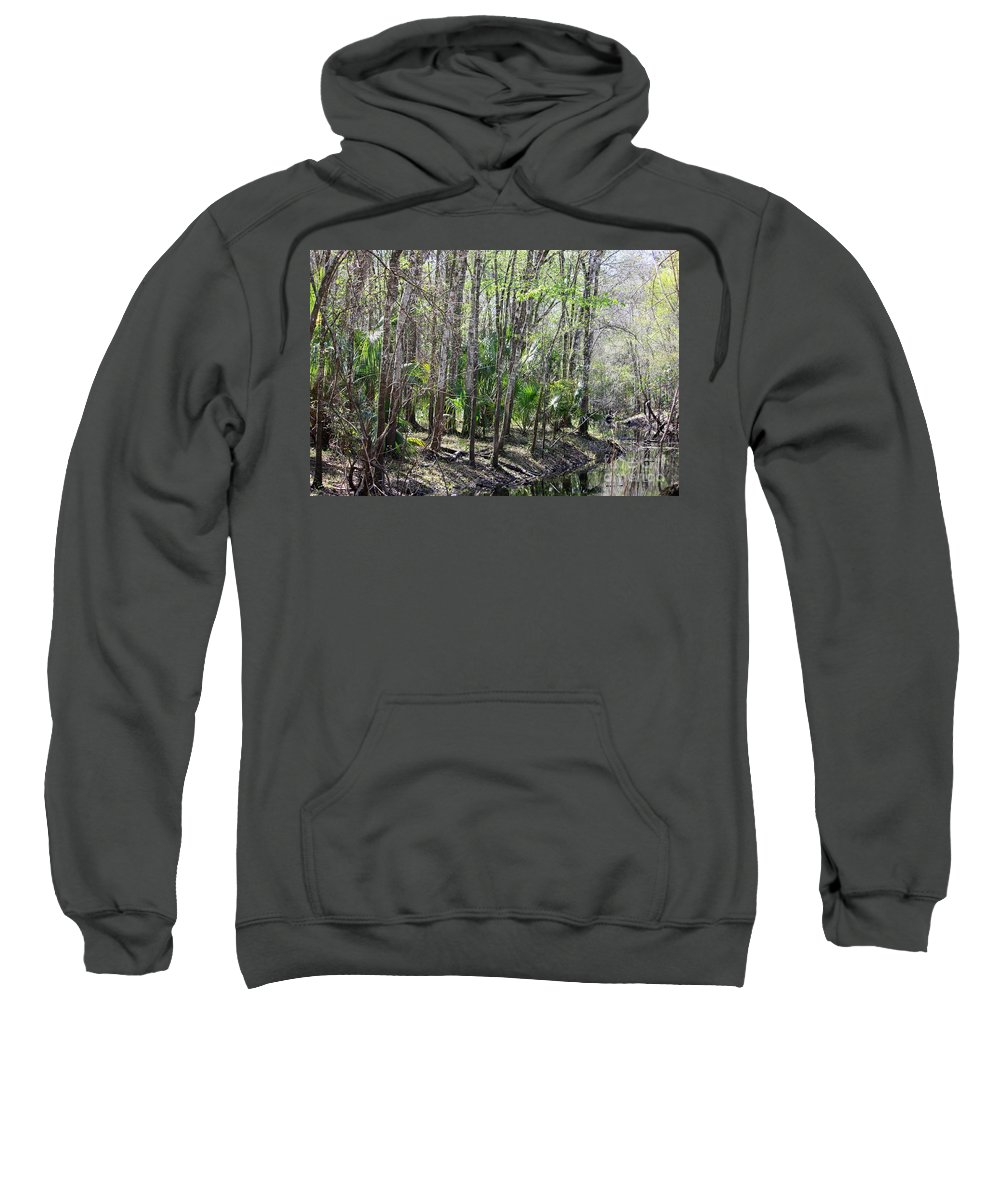 Florida Landscape Sweatshirt featuring the photograph Florida Riverbank by Carol Groenen