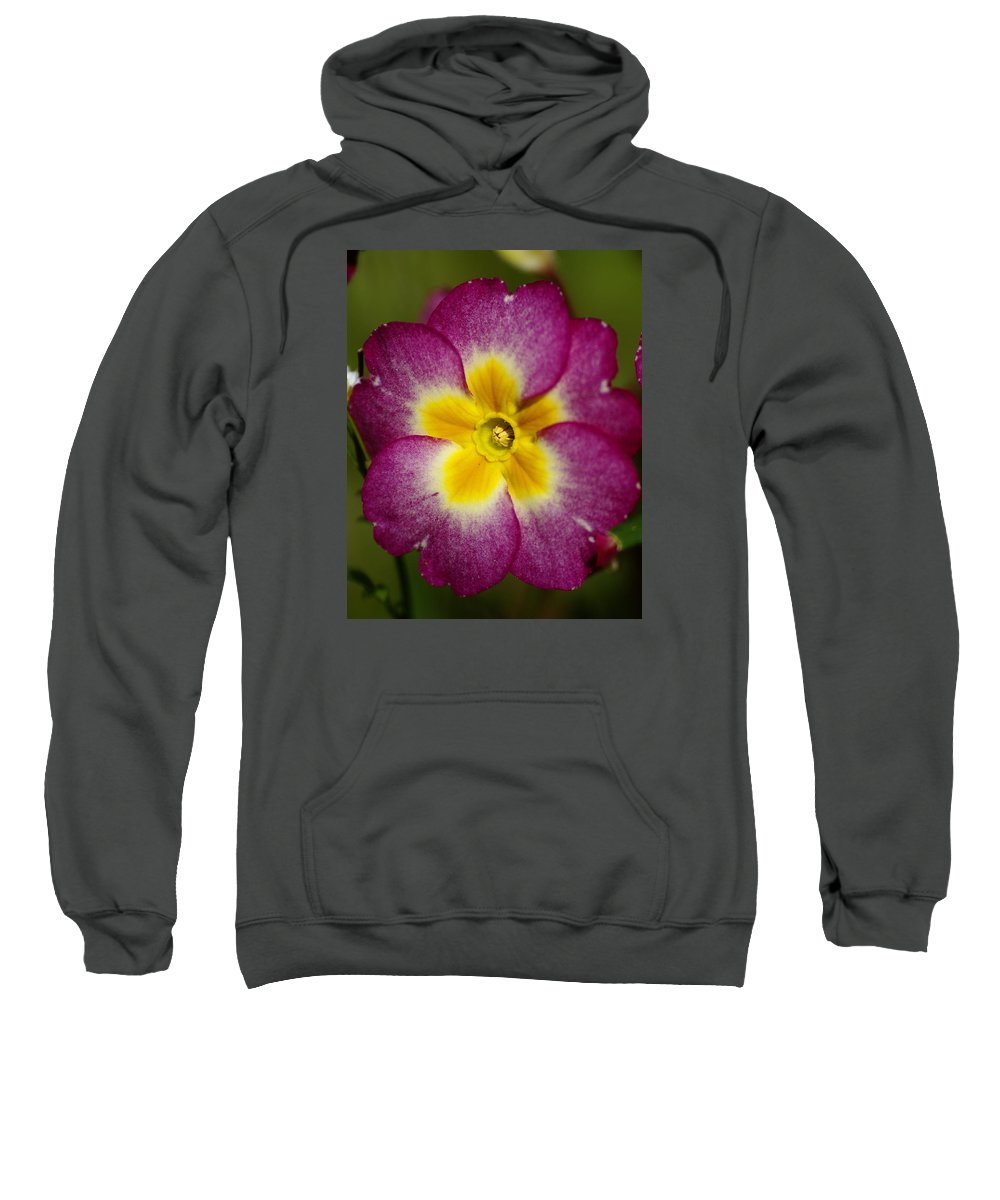 Flowers Sweatshirt featuring the photograph Flower 7 by Ben Upham III