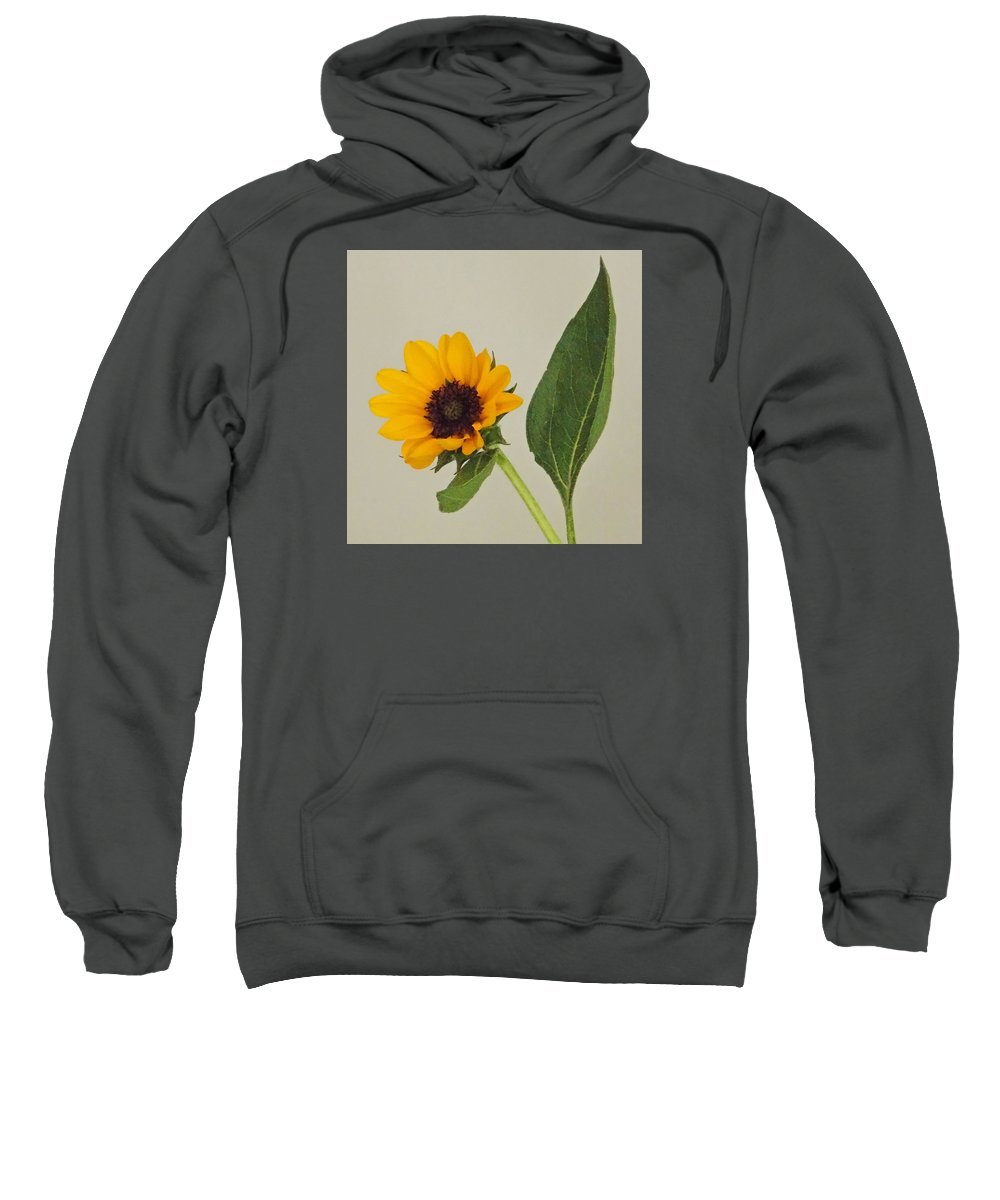 Pictures Of Flowers Sweatshirt featuring the photograph Flower 8-11 by Skip Willits