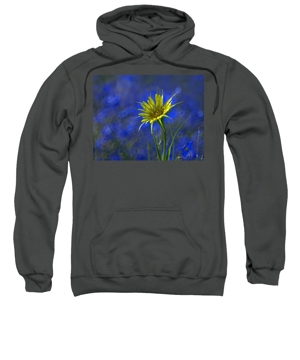 Flower Sweatshirt featuring the photograph Flower And Flax by Heather Coen