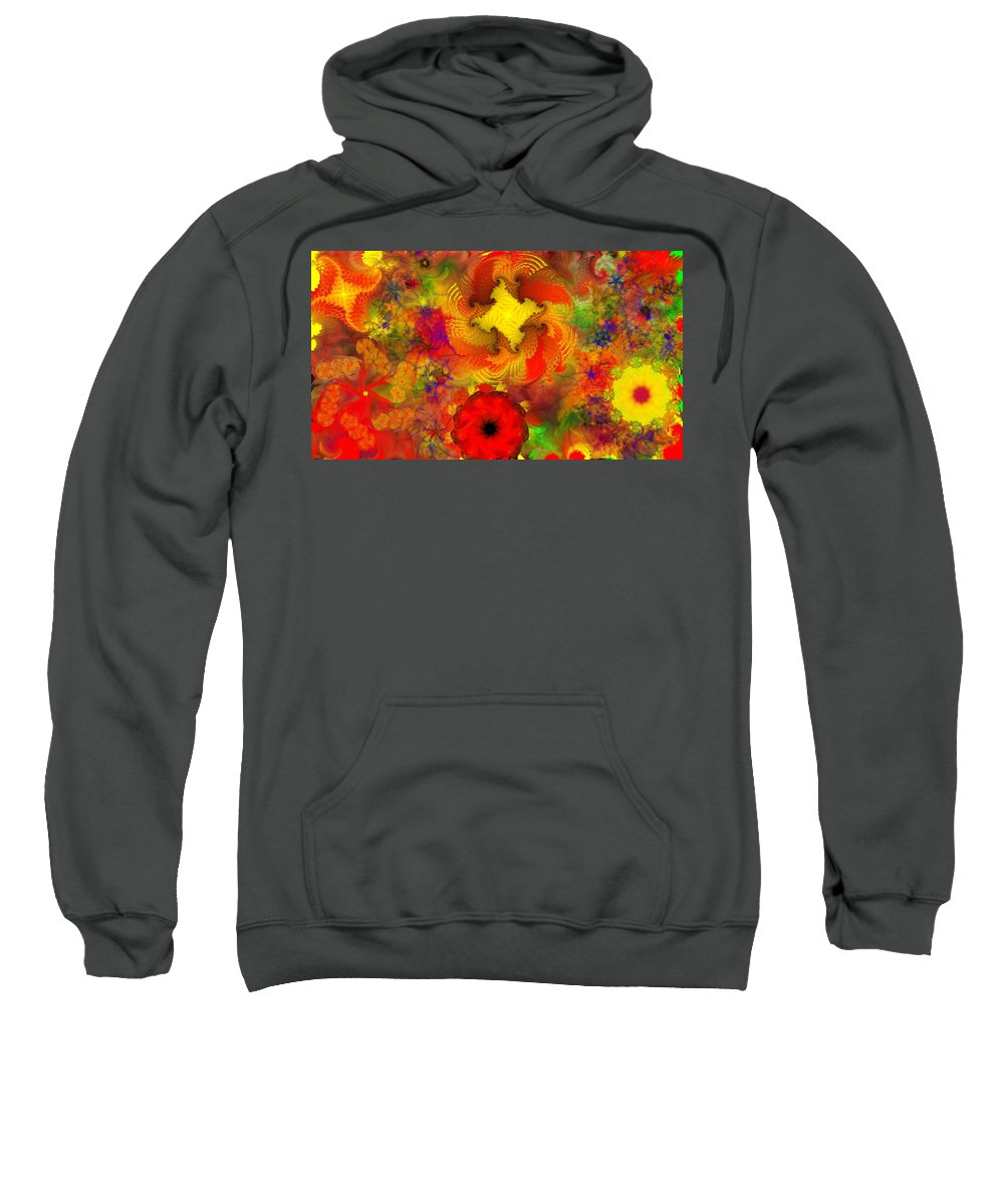 Abstract Digital Painting Sweatshirt featuring the digital art Flower Garden 8-27-09 by David Lane